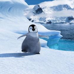 «Happy Feet» conduce detasat in box office-ul de week-end, Evenimente,Stiri VIP,Noutati Vedete