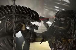 Aliens Vs. Predator Requiem primul trailer oficial., Exclusiv,Stiri VIP,Noutati Vedete